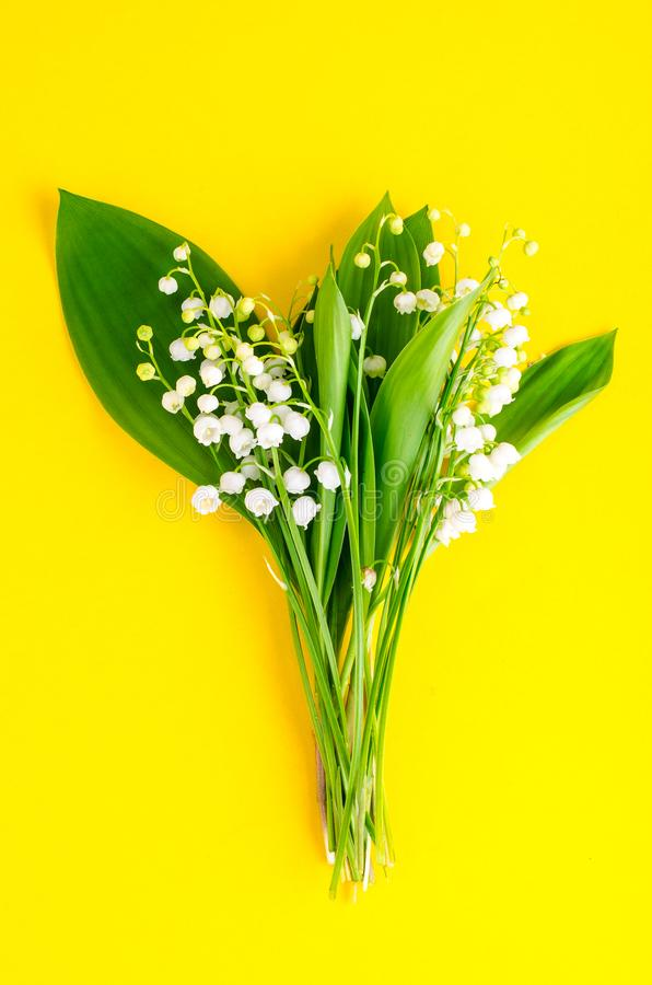Bunch of tender white spring lilies of valley. Studio Photo stock image