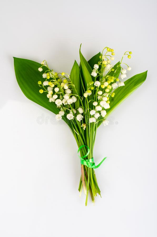 Bunch of tender white spring lilies of valley. Studio Photo royalty free stock image