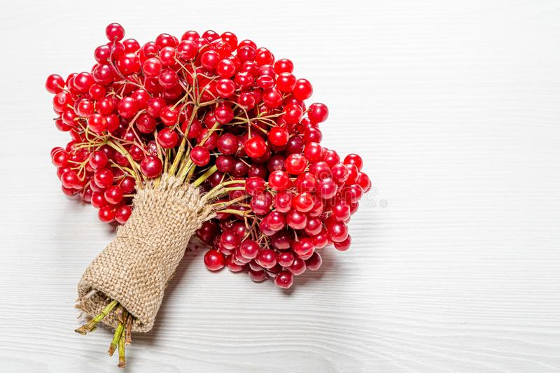 A bunch of twigs with berries of fresh ripe viburnum on a white wooden background & x28;Flip 2019 royalty free stock images