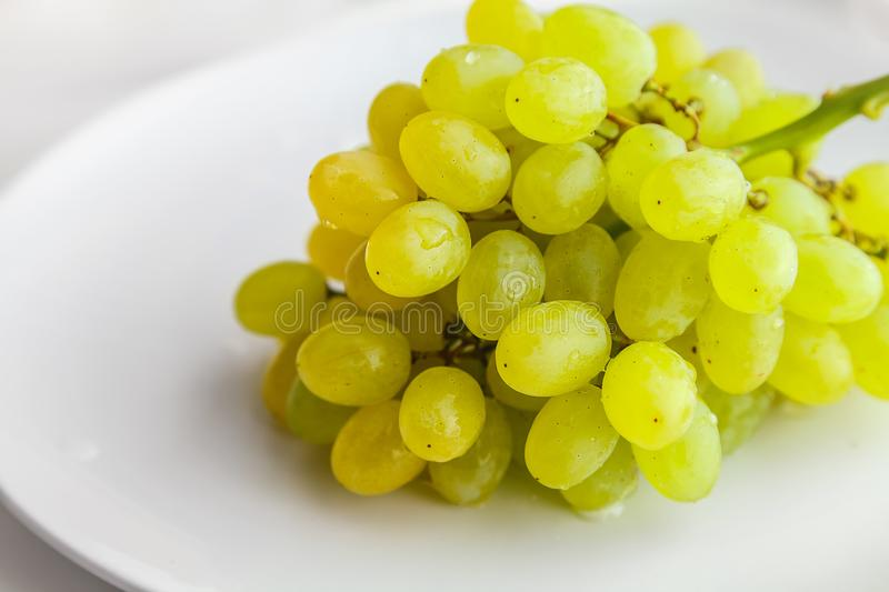 Bunch of wet white grapes on a plate royalty free stock photos