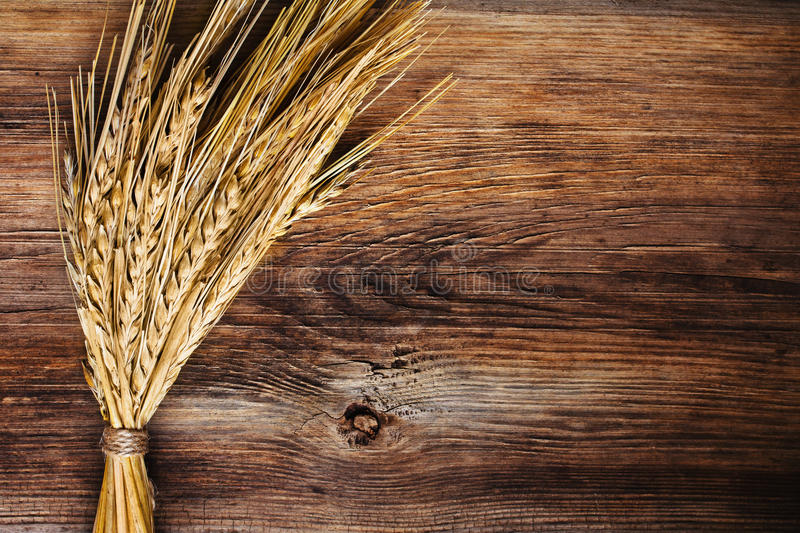 Bunch Of Wheat Ears Stock Photography