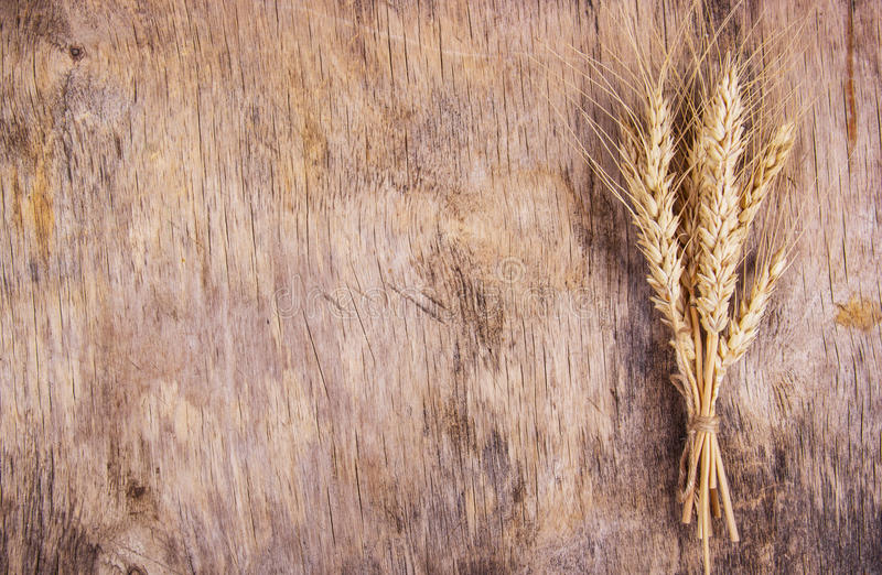 A bunch of wheat spikes on an old wooden background. royalty free stock image
