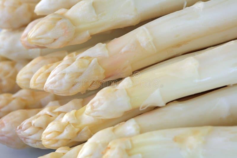 Fresh white Asparagus royalty free stock photos