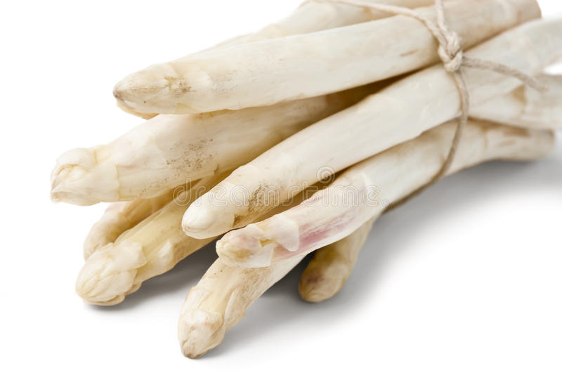 Bunch of white raw asparagus royalty free stock photos