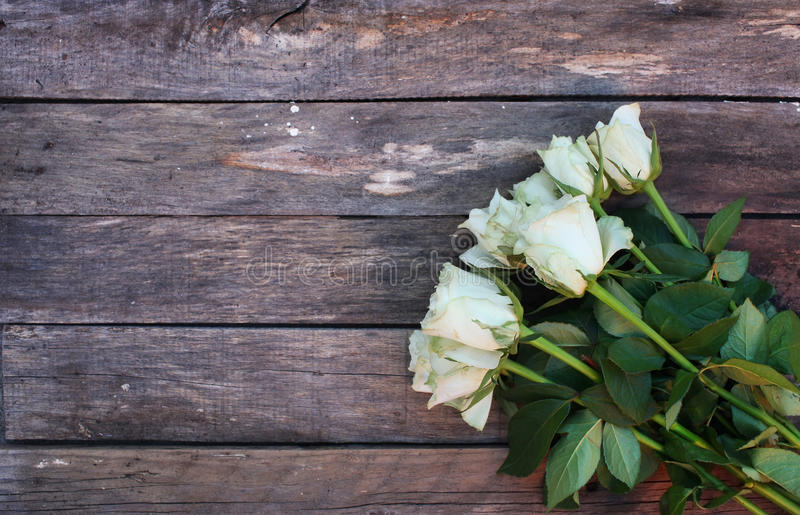 A bunch of white roses stock photos