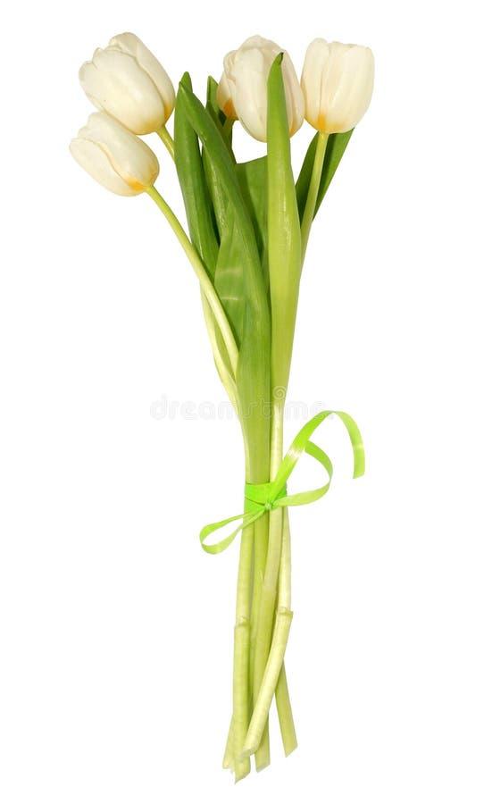 Bunch of white tulips stock photo