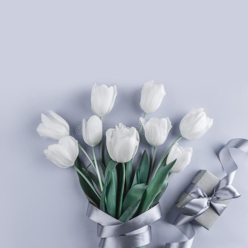 Bunch of white tulips flowers with gift on blue background. Waiting for spring royalty free stock photography