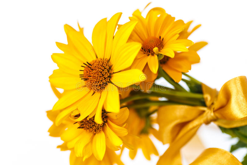 Bunch of yellow daisy flowers royalty free stock photography