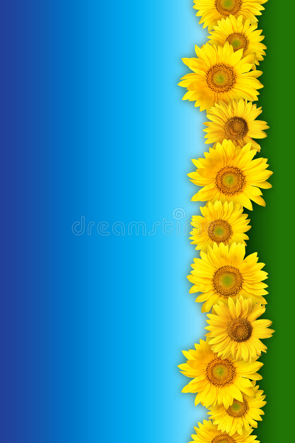 Download Bunch of yellow flowers stock image. Image of bright, colours - 5666697