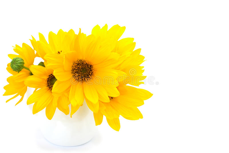 Bunch Of Yellow Flowers On White Background Stock Photo ...