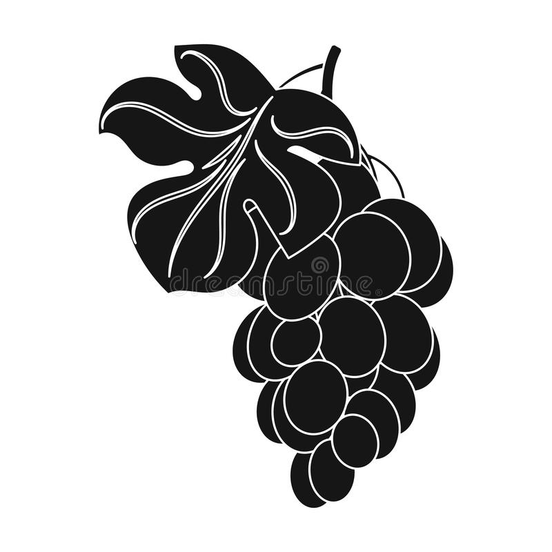 Bunch of yellow grapes icon in black style isolated on white background. Wine production symbol stock vector. Bunch of yellow grapes icon in black design vector illustration