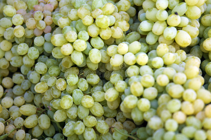 Bunch of Yellow Grapes. At Street Market royalty free stock photos