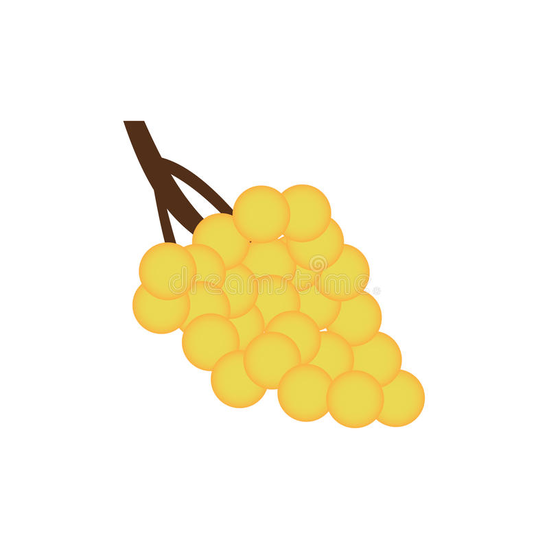 Bunch of yellow grapes with on white background. Green fruit royalty free illustration