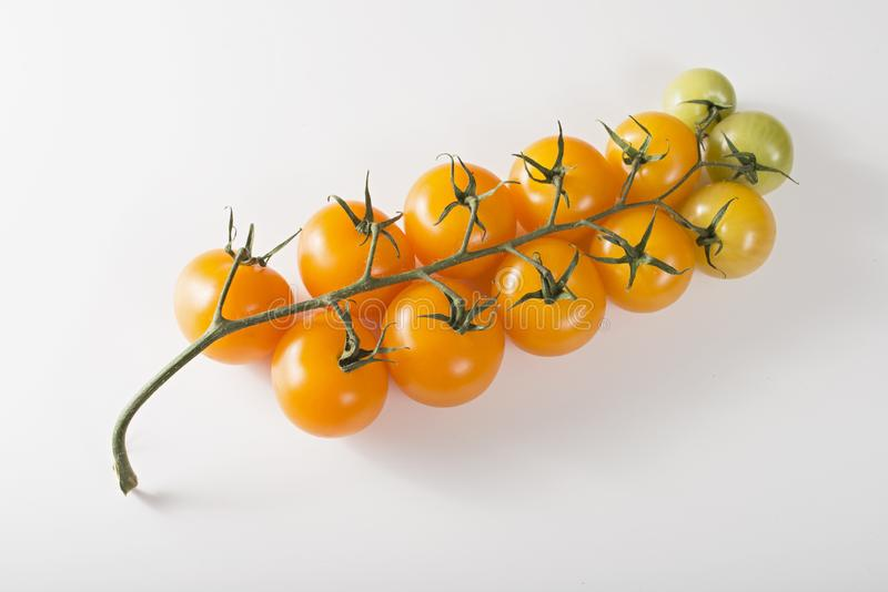 Bunch of yellow tomatoes on a sprig royalty free stock photography