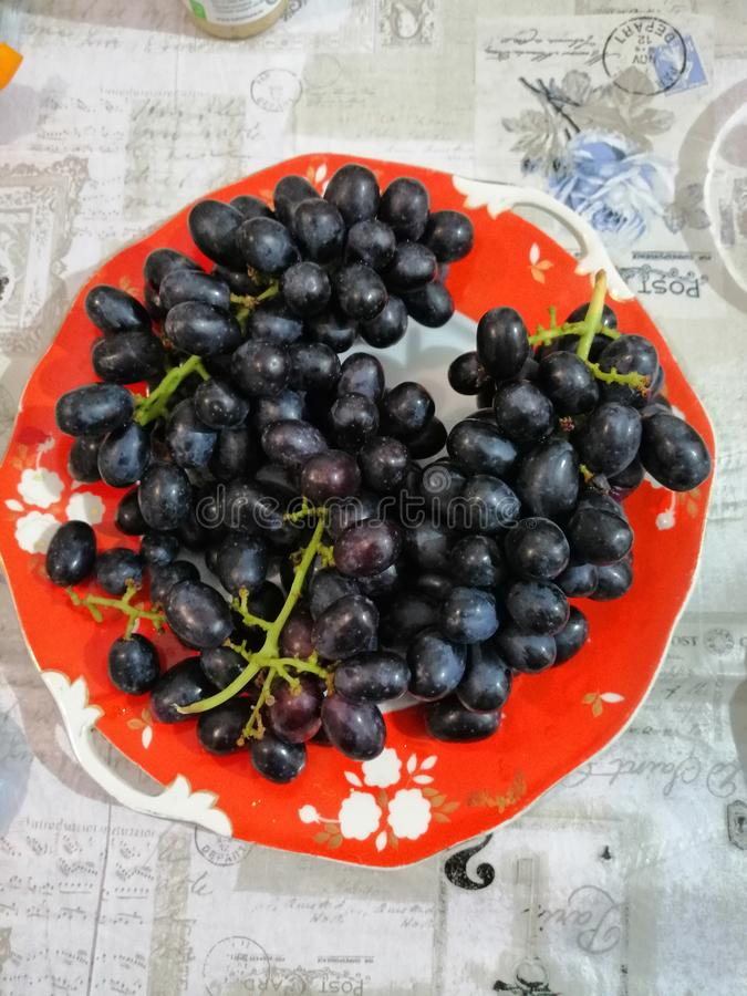 bunches of black grapes on an old red plate stock photo
