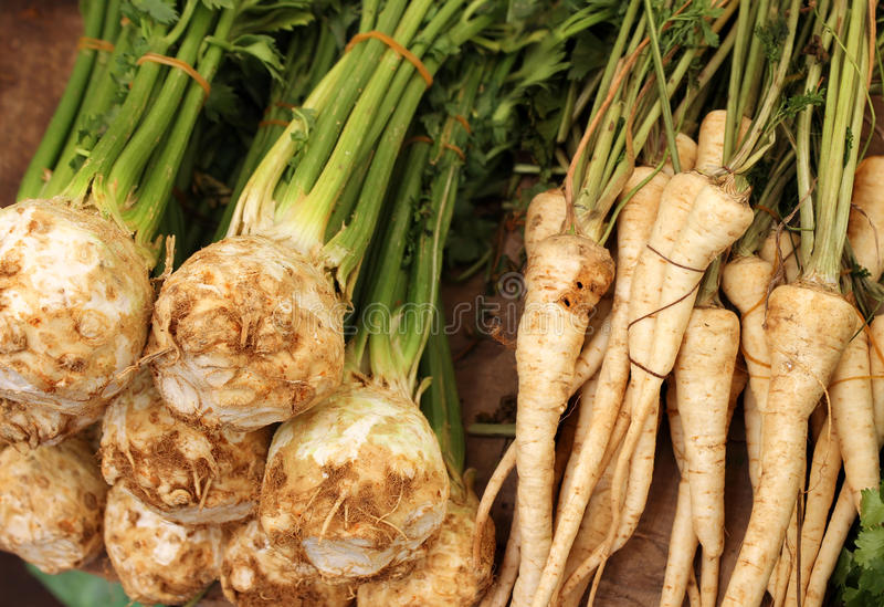 Bunches of celery royalty free stock images