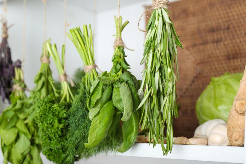 Bunches of different herbs in kitchen royalty free stock photo