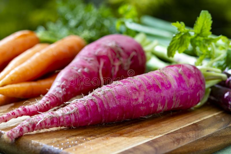 Bunches of fresh red long radish, carrots and purple onion, new harvest of healthy vegetables. Bunches of fresh red long radish, carrots and purple onion, new stock photography