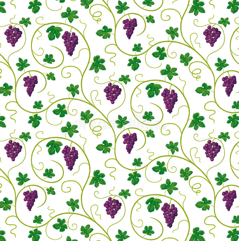 Bunches of grapes stock illustration
