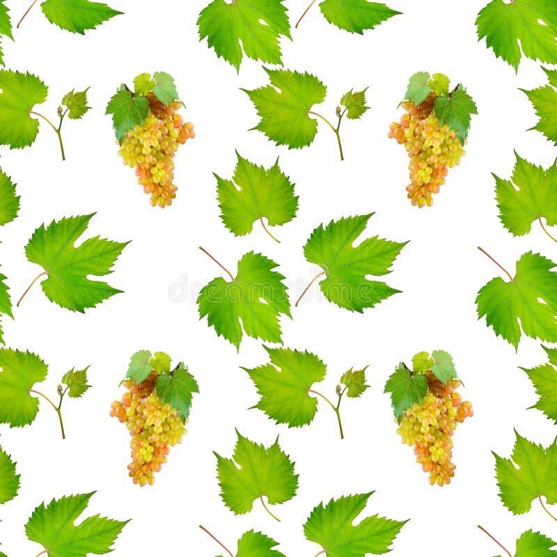 Bunches grapes and leaves isolated on white/ Seamless repeating pattern fruits royalty free stock image