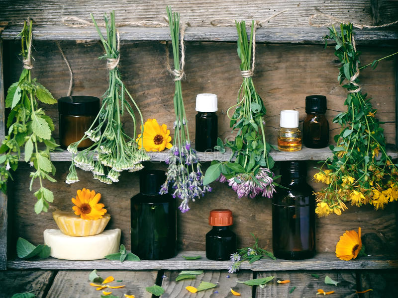 Bunches of healing herbs. Herbal medicine royalty free stock photos