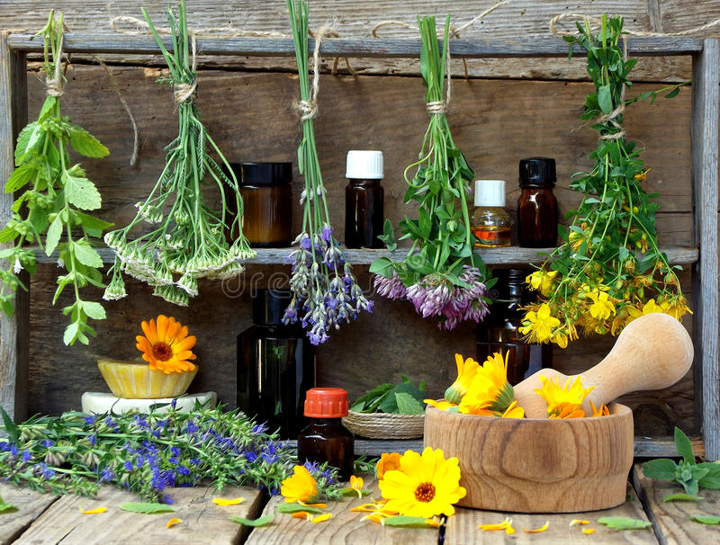 Bunches of healing herbs - mint, yarrow, lavender, clover, hyssop, milfoil, mortar with flowers of calendula and bottles,. Herbal medicine stock photography