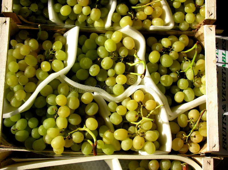 Bunches of Organic Green Grapes in Containers at Market royalty free stock photography