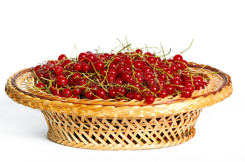 Download Bunches Of Red Currants In A Basket Stock Photo - Image: 32360460