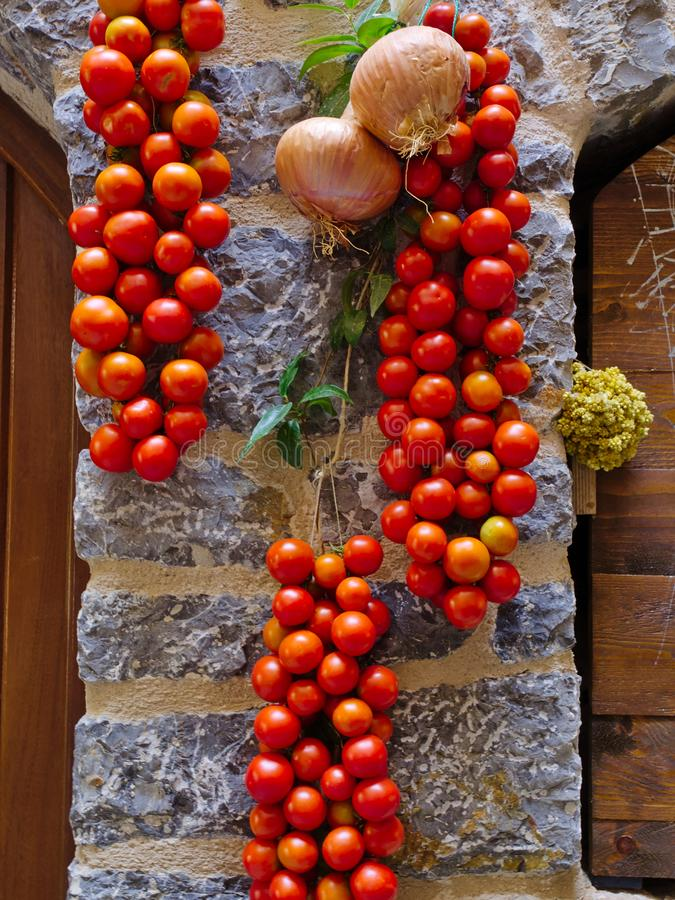 Bunches of small tomatoes getting sun dried stock photography