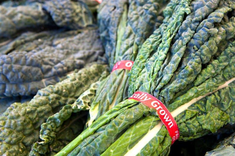 Bundels van Organische Boerenkool stock afbeelding