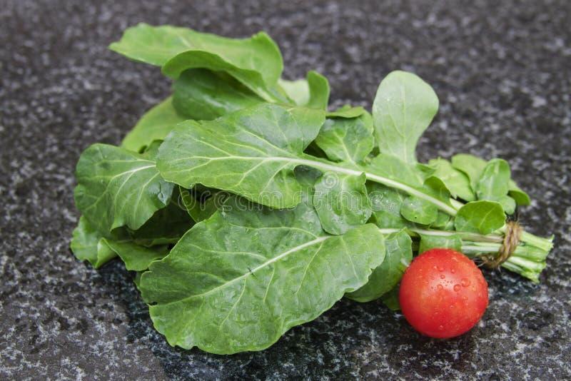Bundle of arugula rukola with tomato stock image