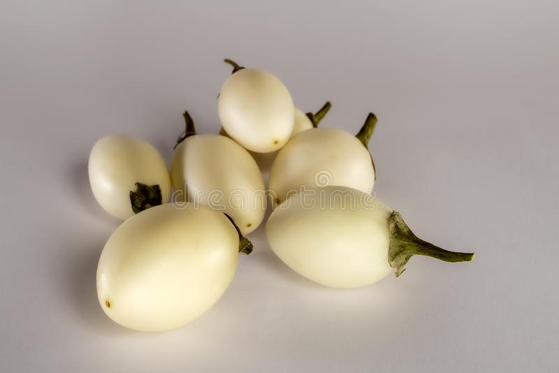 A bundle of thai eggplants on å light background. royalty free stock images