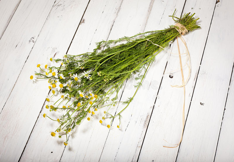 Bundle of chamomile on rustic background royalty free stock photography