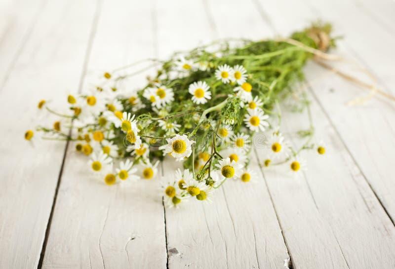 Bundle of chamomile on wooden background stock images