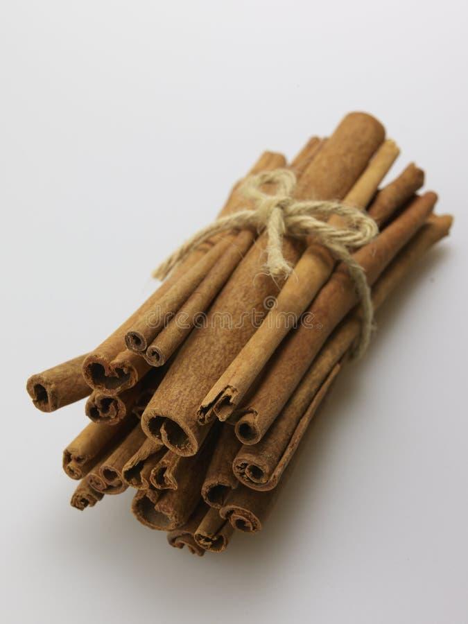 Bundle of Cinnamon Sticks stock image