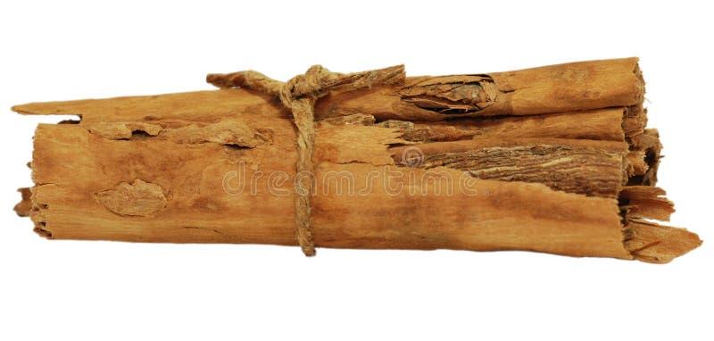 Bundle of fragrant cinnamon sticks royalty free stock image