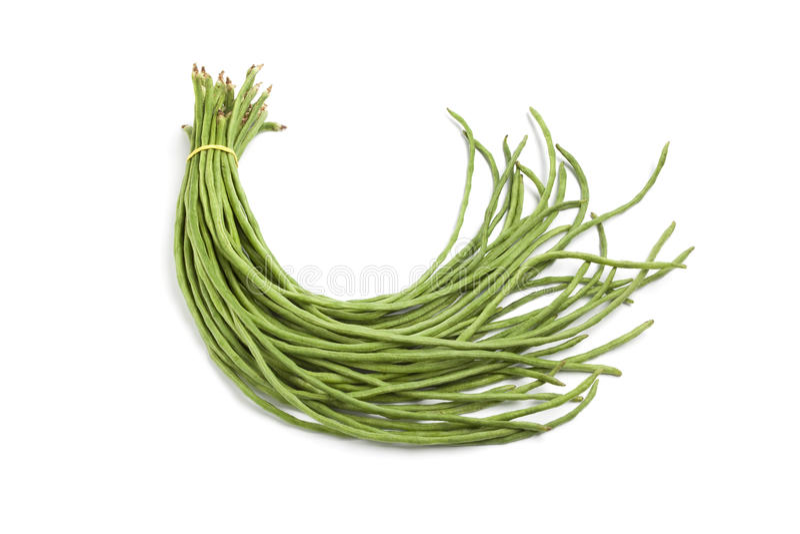 Bundle of fresh Chinese long beans. On white background stock photography