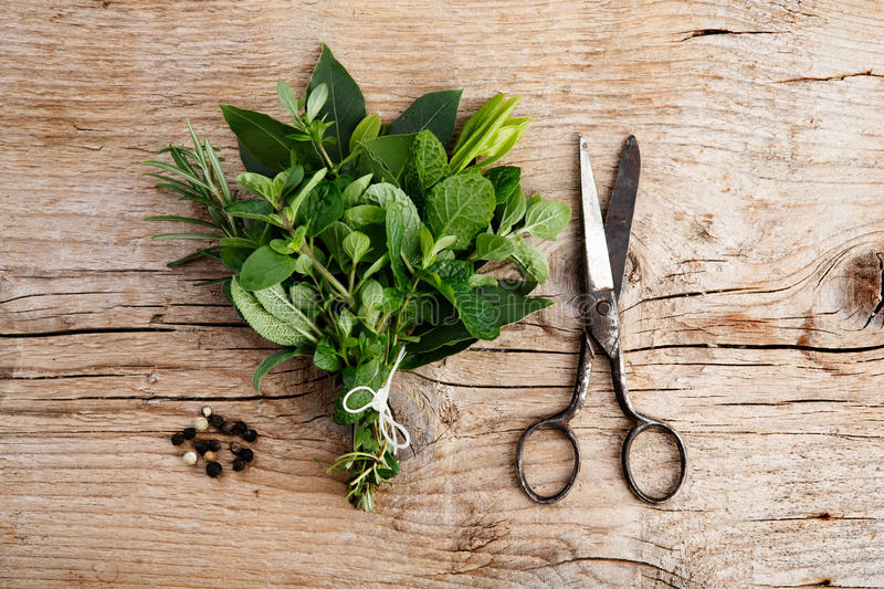 Bundle Of Fresh Kitchen Herbs Royalty Free Stock Photography