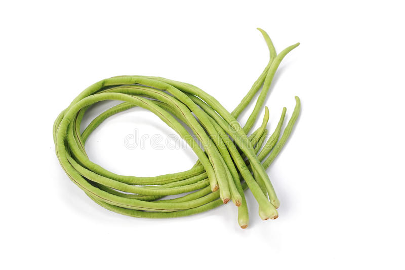Bundle of fresh long beans on a white background.  stock images