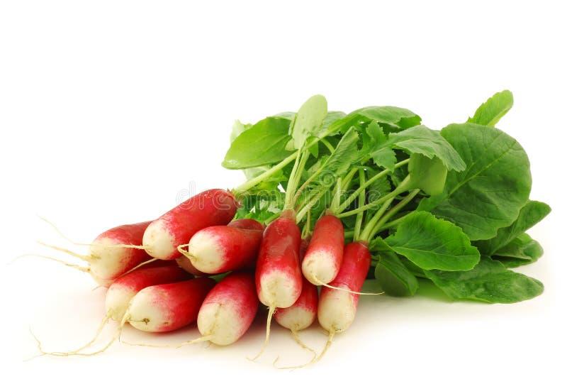 Bundle of fresh red and white radishes stock photo