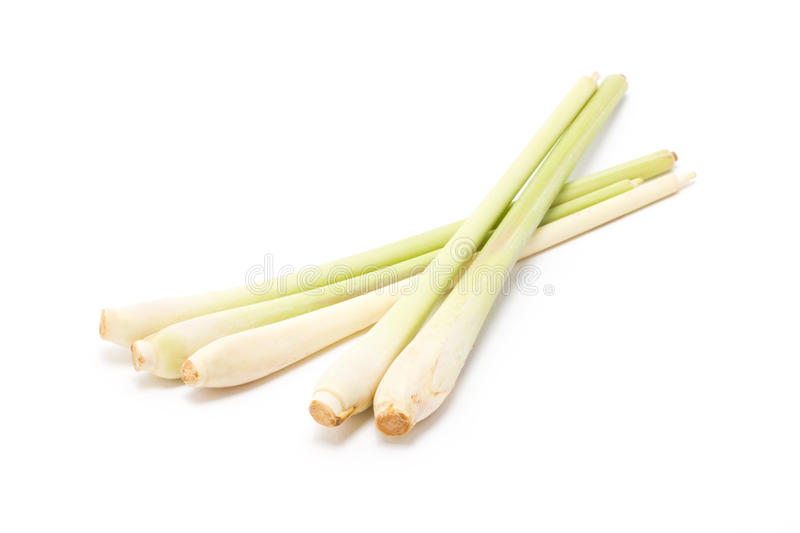 Download Bundle Of Lemongrass. stock photo. Image of organic, herb - 34261774