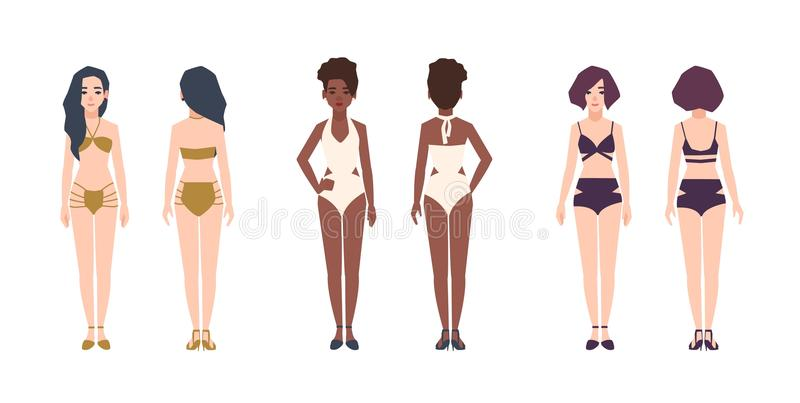 Bundle of multiracial women wearing swimwear. Set of pretty girls dressed in bikini and swimsuits. Female cartoon stock illustration