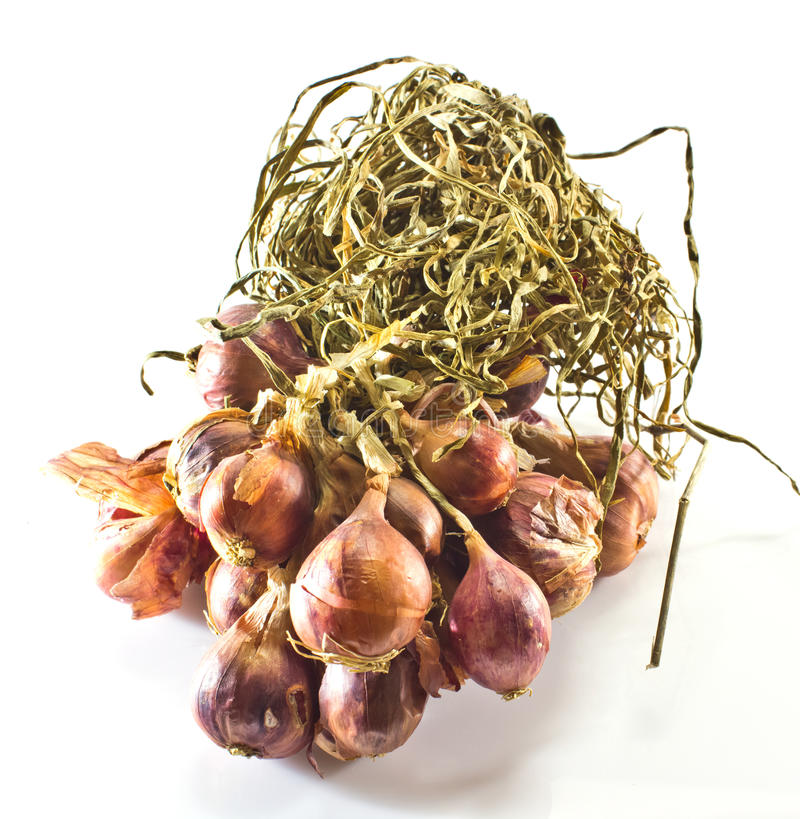 Bundle of red onion