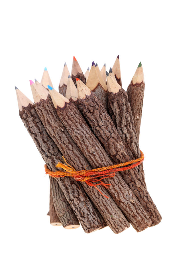 Bundle of tree trunk pencils stock photography