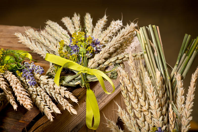 bundle of wheat with flower royalty free stock photography