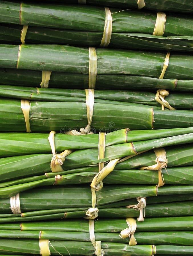 Download Bundles of banana leaves stock image. Image of pattern - 13475941