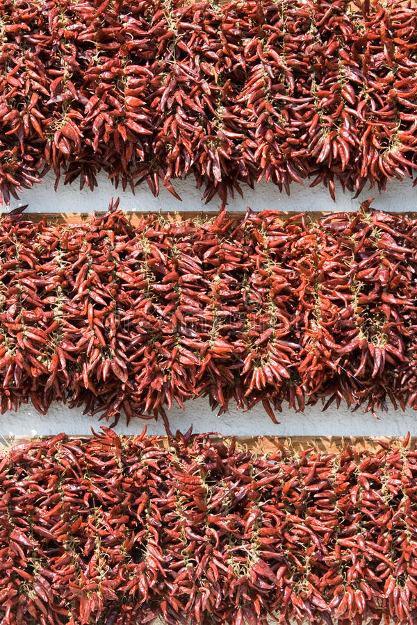Download Bundles Of Dried Red Cayenne Hot Pepper Vertical Stock Image - Image: 11936405