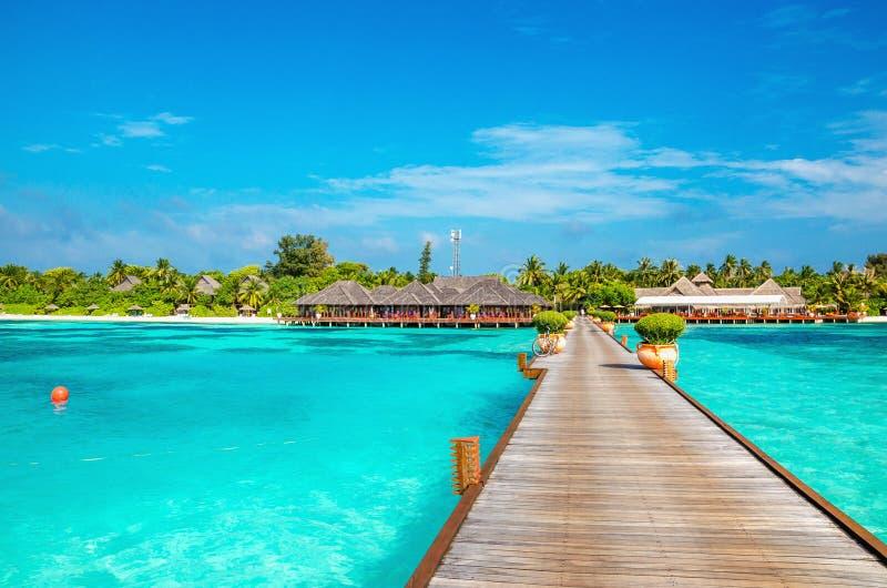 Bungalow esotico sui precedenti di una spiaggia sabbiosa con le palme alte, Maldive immagine stock