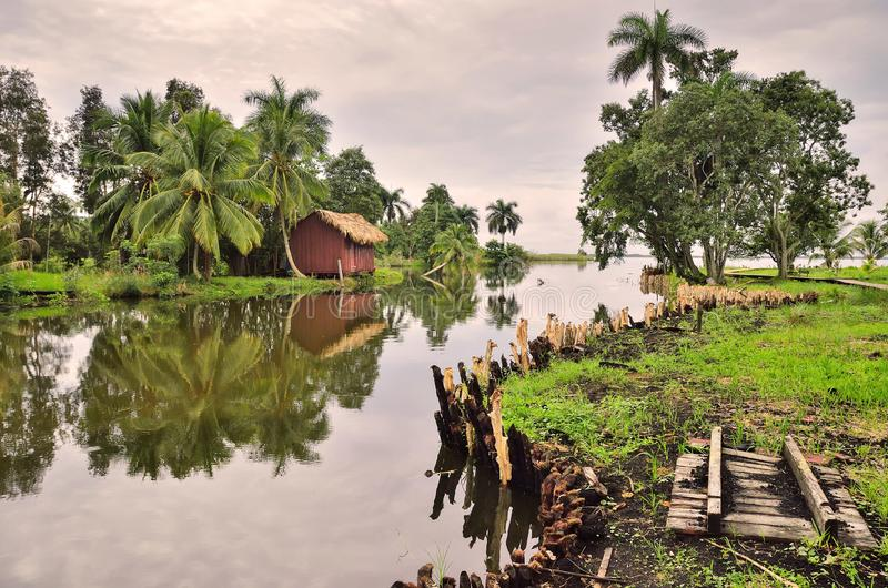 Bungalow, hut in a rainforest on the banks of the river,. Amid palm trees and green tropical vegetation stock image