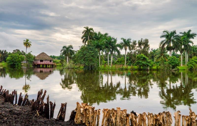Bungalow sul fiume nella foresta pluviale immagine stock libera da diritti